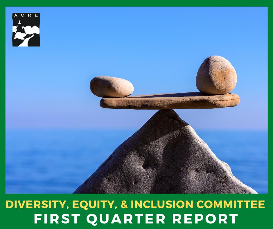 DEI FIRST QUARTER REPORT AORE