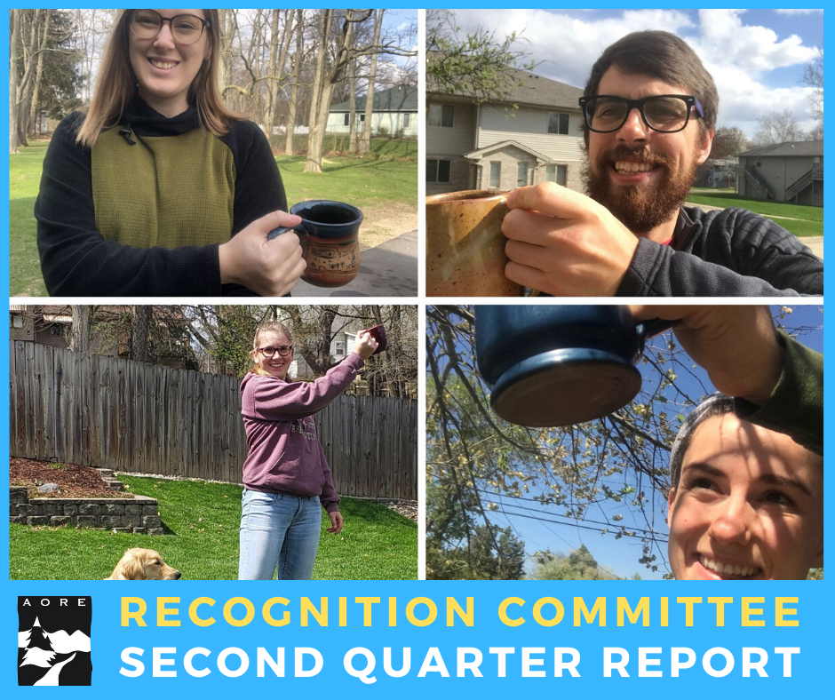 aore recognition committee report - second quarter 2020